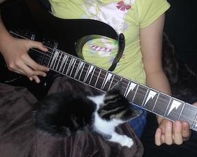 purr:guitar