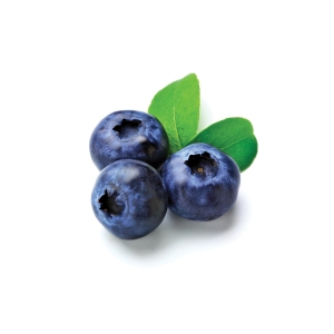 NSA_blueberry_web