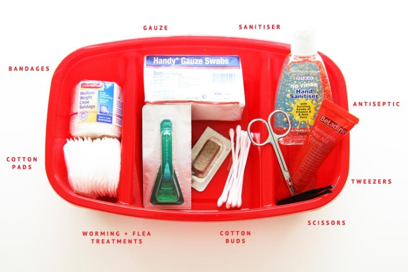 DIY-Dog-First-Aid-Kit-_-Pretty-Fluffy