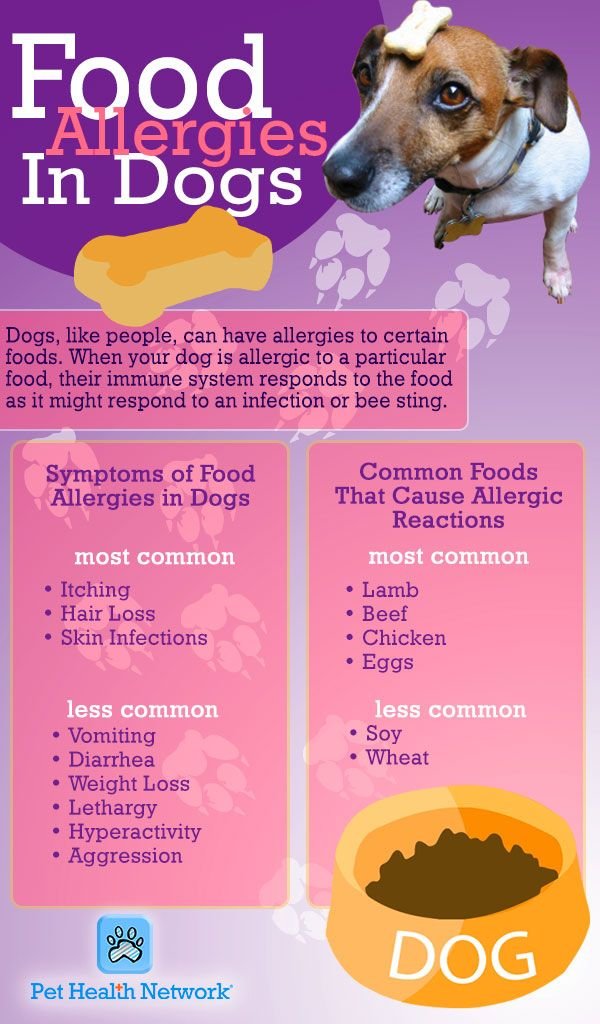 Allergies Jeanne Foguth S Blog