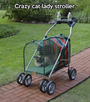 Stroller For Cat People.jpg