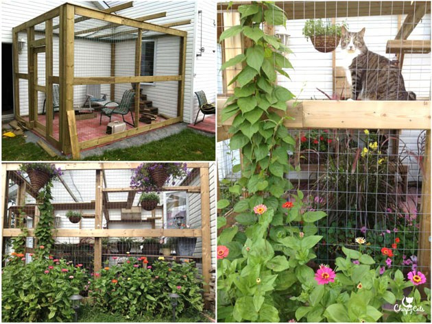 how-to-build-a-catio-2.jpg