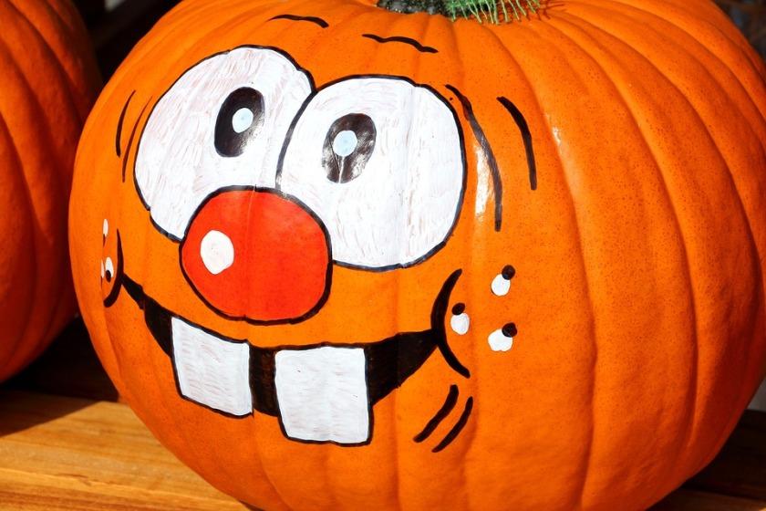 pumpkin-1643825_960_720