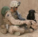 soldier-919186_960_720