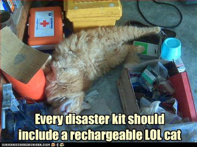rechargeable-lol-cat2.jpg