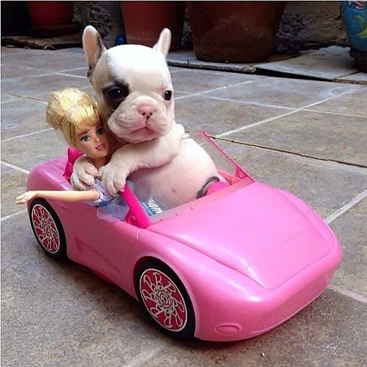 cruizingwithbarbie.jpg
