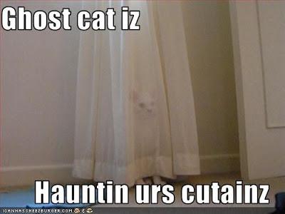curtainz