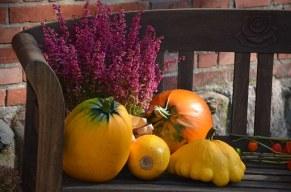 gourd-474219__340