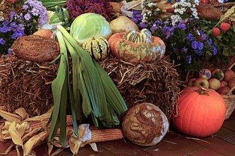 thanksgiving-1766814__340
