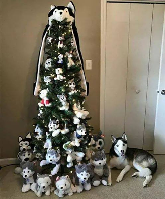 What do you think of this HUSKY CHRISTMAS TREE